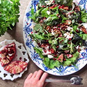 Buffalo Mozarella + Pomegranate Salad